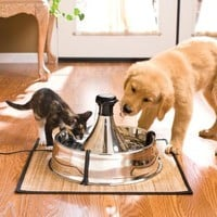 Stainless Steel 360 Fountain | Pet Products | SkyMall