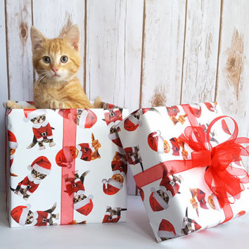 Kittens in Santa Suits Christmas Wrapping Paper, Holiday Gift Wrap 10 ft x 2 ft. / 3.048 m. x .60 m. Roll,