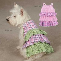 Zack & Zoey UM3003 10 43 Summer Breeze Dress for Dogs, X-Small, Green