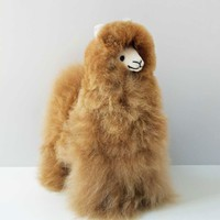 Daniel Alpaca Stuffed Animal