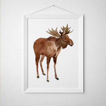 Nursery print Elk poster Animal print Wildlife art ACW457