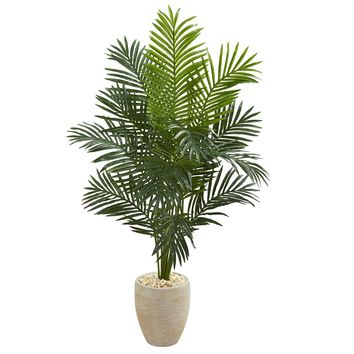 Artificial Tree -5.5 Foot Paradise Palm Tree with Sand Colored Planter
