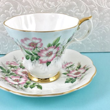 Vintage Royal Albert Tea Cup, Tea Cup and Saucer, English China,Friendship Series, Pink Teacup Set, Wild Rose, Birthday Gift for Friend