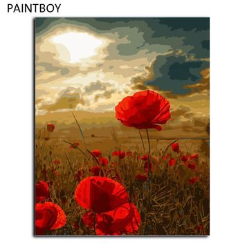Poppy Flower DIY Oil Painting By Numbers Frameless Pictures Digital Canvas Oil Painting Home Decor Living Room G448