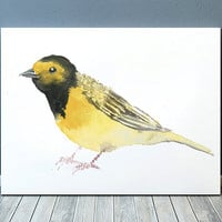 Hooded warbler print Bird watercolor Cute nursery art ACW138