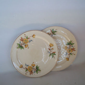 Vintage Lot 2 Plates Taylor Smith Taylor  /  Bread Or Salad Plates Yellow Flowers 7 inches
