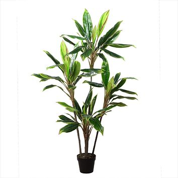 "55.25"" Decorative Potted Artificial Two Tone Green and Red Dracaena Plant"