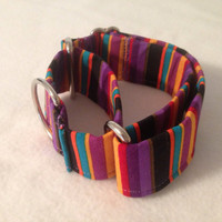 Jessica Stripe Martingale or Quick Release Collar
