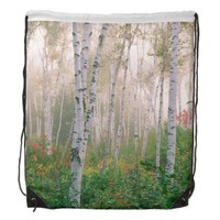USA, New Hampshire. Birch trees in clearing fog Drawstring Bags