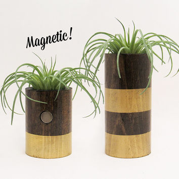 Magnetic Air Planter, Wood Planters, Air Plant Holders, Modern Planters, Unique Planters, Rustic Planters, Indoor Planters, Gold - Set of 2