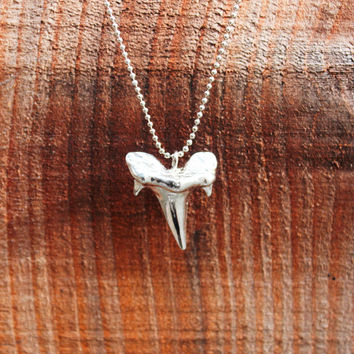 Shark Tooth Pendant Necklace - Silver