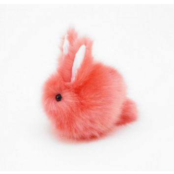 Super Fluffy Bunny Rabbit! Coral