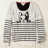 Top Dog Pullover