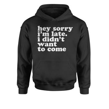 Hey Sorry I'm Late, I Didn't Want To Come  Youth-Sized Hoodie