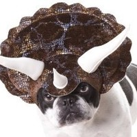 Animal Planet PET20104 Triceratops Dog Costume, Large