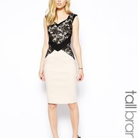 Paper Dolls Tall Lace Overlay Pencil Dress - Cream/black