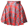 Plaid Pleated Skater Skirt