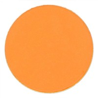 Coastal Scents: Hot Pot Light Tangerine by Coastal Scents