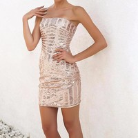 Sweet Caroline Strapless Party Dress