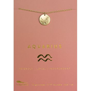 Lucky Feather Aquarius Zodiac Sign Constellation Necklace