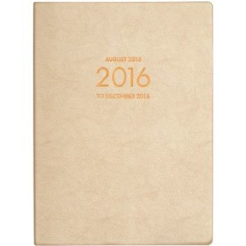 2015-2016 Paper Source Large Gold Leatherette Planner