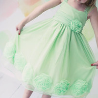 (Sale) Mint Green Tulle Overlay Dress with Large Dimensional Mesh Flowers at the Hem (Girls 2T - Size 12)