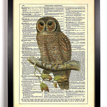 Watcher Owl, Vintage Illustration, Eco Friendly Home, Kitchen, Bathroom, Nursery Decor, Dictionary Book Print Buy 2 Get 1 FREE