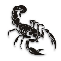 Car-Styling Personality Cover Scratches Before And After Bumper Scorpion Stickers Car Accessories CT-543