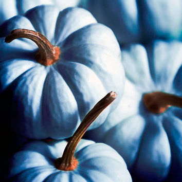 Midnight blue pumpkins Halloween Decor rustic blue by Raceytay