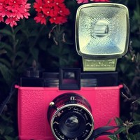 Diana F Mr Pink Film Camera