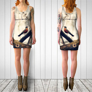 Women's Art Fitted or Flare Dress Robin Red Breast fine art photography Fashion