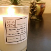 Pisces Zodiac Soy Candle - Created for the psychic, absentminded and spiritual personality. Gift idea, essential oil , truly handmade