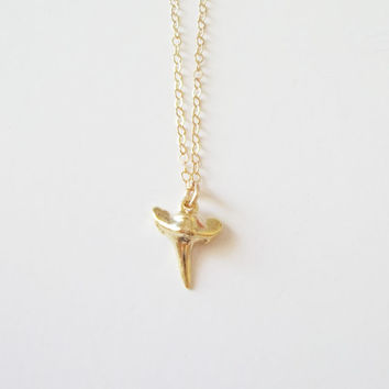 Tiny gold shark tooth necklace, gold shark necklace, dainty shark necklace, dainty gold jewelry