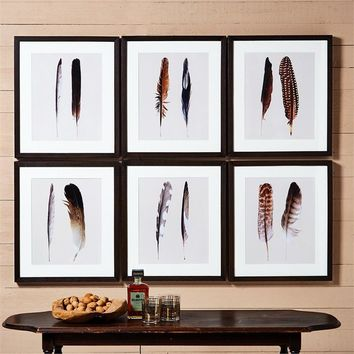 Feather Wall Art - Set of 6