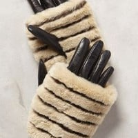 Antipova Cuff Gloves by Anthropologie Black One Size Gloves