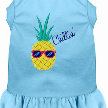 Pineapple Chillin Embroidered Dog Dress Baby Blue Xxl (18)
