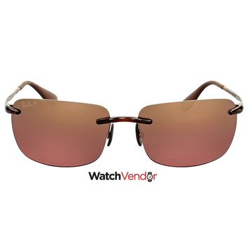 Ray Ban Brown Polarized Sunglasses