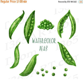 50% OFF SALE Peas Clipart, Watercolor Peas Clip Art, Sweet Peas Clipart, Peas In A Pod, Vegetable Paintings, Elements, Hand Painted, Png