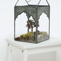 Greenhouse Terrarium - Urban Outfitters
