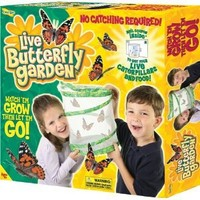 Original Butterfly Garden with Voucher