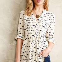 Women's Designer Shirts, Tunics & Blouses | Anthropologie