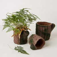 Tree Trunk Garden Pots