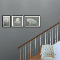 Rustic print set, wall gallery prints, queen anne's lace prints collection, grey muted prints, foyer decor, entry art, flower photography