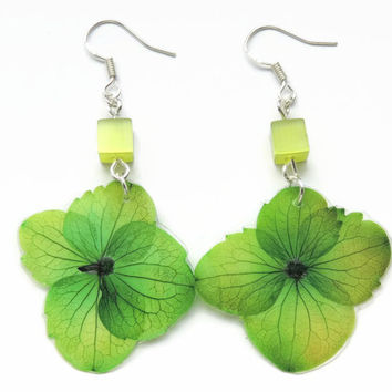 Pressed Hydrangea Earrings, Green Dangle earrings, Real flower jewelry, Nature lover gift, Dried flowers jewelry , Eco friendly