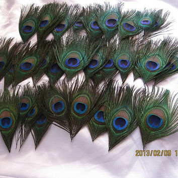 100pcs/lot Peacock eye feathers for Wedding feather boutonnieres  invitation Party Event Decoration DIY scrapbook or hairpiece