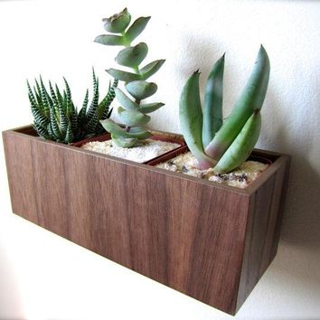 Wall Hanging Planter (8) Plant Holder For Succulents Cacti Or Air Plants In Walnut Wood Roughly 8x3x3