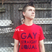LGBT Gay Straight Equal Rights tshirt hand stenciled & spray painted by Rainbow Alternative on Etsy