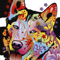 Siberian Husky 1 Poster Print by Dean Russo