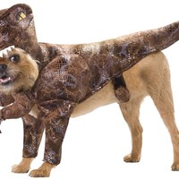 Animal Planet PET20109 Raptor Dog Costume, Large
