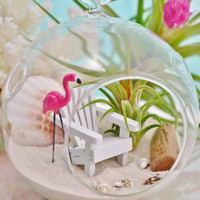 Beach Terrarium ~ Beach Chair ~ Flamingo ~ Small Glass Globe Terrarium Kit with Air Plant ~ Home Decor ~ Gift ~ Mother's Day ~ S